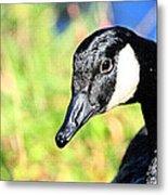 Goose Art Metal Print