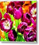 Gorgeous Tulips Metal Print