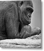 Gorilla Portrait Metal Print