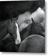 Got Your Back Metal Print