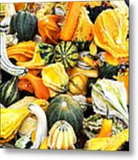 Gourds And Squash Metal Print