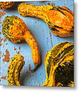 Gourds On Wooden Blue Board Metal Print