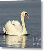 Graceful Moments Metal Print