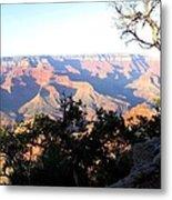 Grand Canyon 61 Metal Print