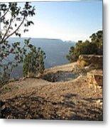 Grand Canyon Rim View Metal Print