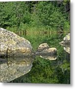 Granite Fish Metal Print