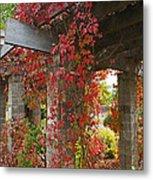 Grape Leaves On Columns Metal Print