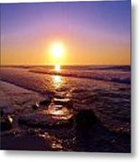 Grape Sea Metal Print