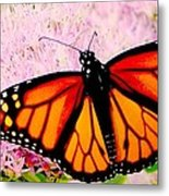 Graphic Monarch Metal Print