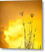 Grass Silhouette  Metal Print