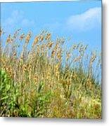 Grass Waving In The Breeze Metal Print