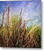 Grasses Standing Tall Metal Print