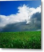 Grassy Field, Ireland Metal Print by The Irish Image Collection