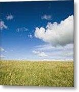 Grassy Field On Hill With Blue Skies Metal Print