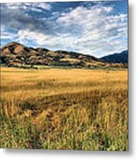 Grassy Plains And Ancient Dunes Metal Print