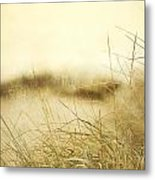 Gray Day At The Beach Metal Print