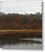 Gray Lake Metal Print