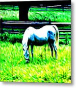 Grazing Horse Metal Print by Bill Cannon