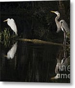 Great Blue Heron And Great Egret At Day's End Metal Print