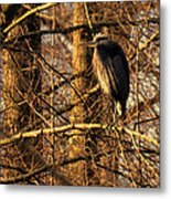 Great Blue Heron At Dusk Metal Print