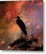 Great Blue Heron Viewing The Cosmos Metal Print