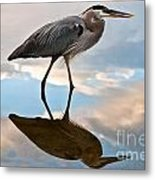 Great Blue Reflections Metal Print