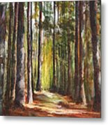 Great Brook Farm Summer Path Metal Print