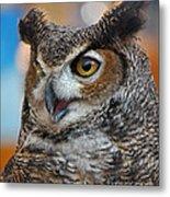 Great Horned Owl Portrait Metal Print