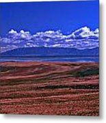 Great Salt Lake And Antelope Island Metal Print