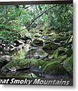 Great Smoky Mountains National Park 5 Metal Print