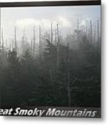 Great Smoky Mountains National Park 8 Metal Print