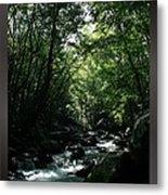 Great Smoky Mountains Np 007 Metal Print