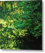 Green Dream Metal Print