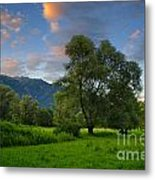 Green Field With Trees Metal Print