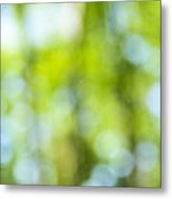 Green Forest And Blue Sky Metal Print