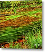 Green Forest River Metal Print