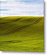 Green Hill Metal Print