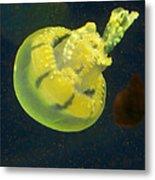 Green Jellyfish Metal Print