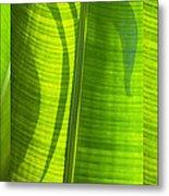 Green Leaf Metal Print by Setsiri Silapasuwanchai