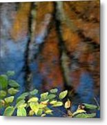 Green Leaves And Autumn Reflection Metal Print