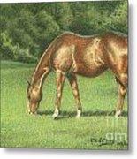 Green Pastures Metal Print