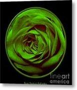 Green Rose On Black Metal Print
