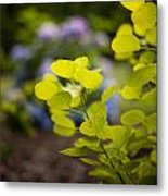 Leaves Illumination Metal Print