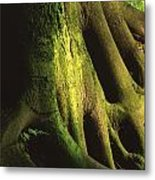 Green Trunk Metal Print