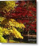 Green Yellow Red Metal Print