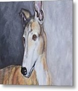 Greyhound In Thought Metal Print