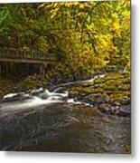 Grist Mill Creek Metal Print