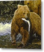 Grizzly Bear And Cubs Metal Print