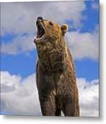 Grizzly Bear Roaring Metal Print