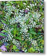Ground Cover Metal Print